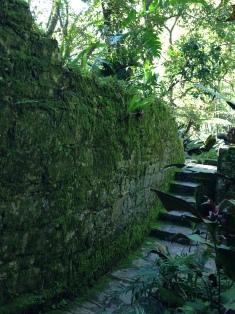 Caminos Xilitla