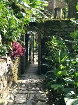 Caminos y Puertas Xilitla