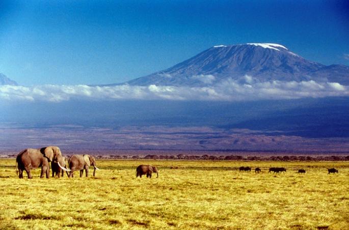Kilimanjaro_01